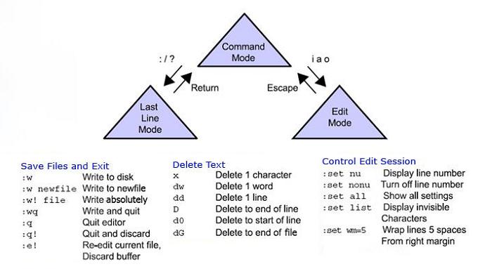 Hướng dẫn cơ bản sử dụng vi trong Linux
