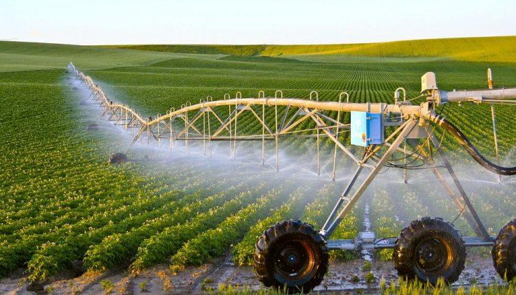 5 Mẫu web nông nghiệp tạo ra sự cách tân, hiện đại nhất